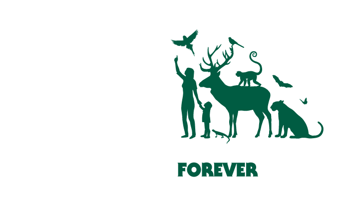 FSC brand mark forests forever